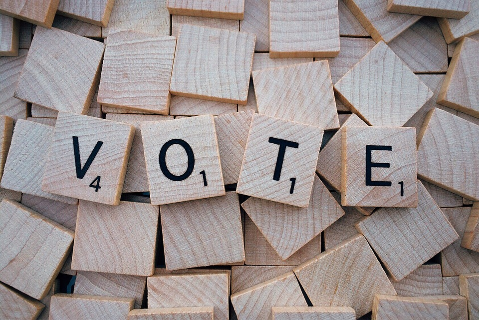 vote-1804596_960_720